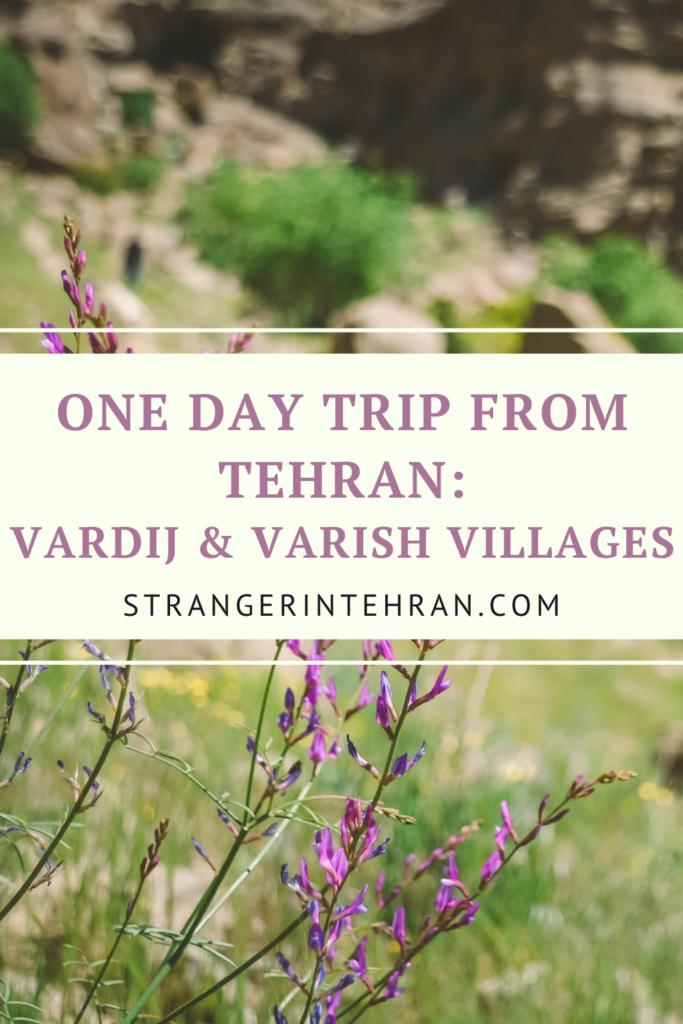 Pin Vardij Village